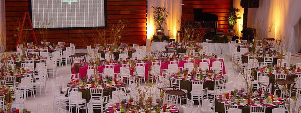 Party rental brooklyn ny as chair and party rentals junglespirit Choice Image